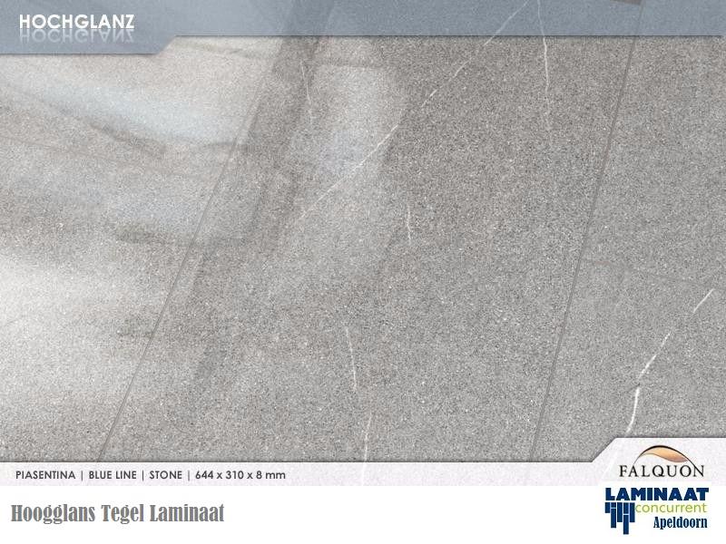 hoogglans tegel grijs Piasentina D8434 3