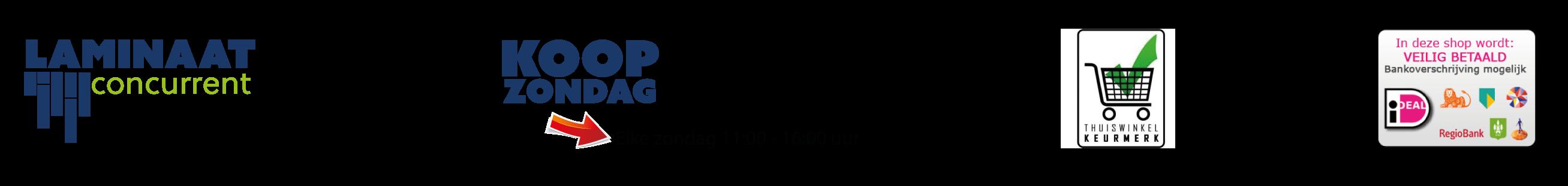 Laminaat Concurrent Retina Logo