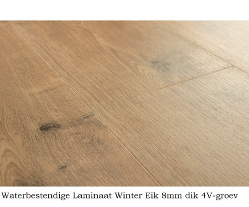 waterbestendig laminaat Winter Eik 8690 1