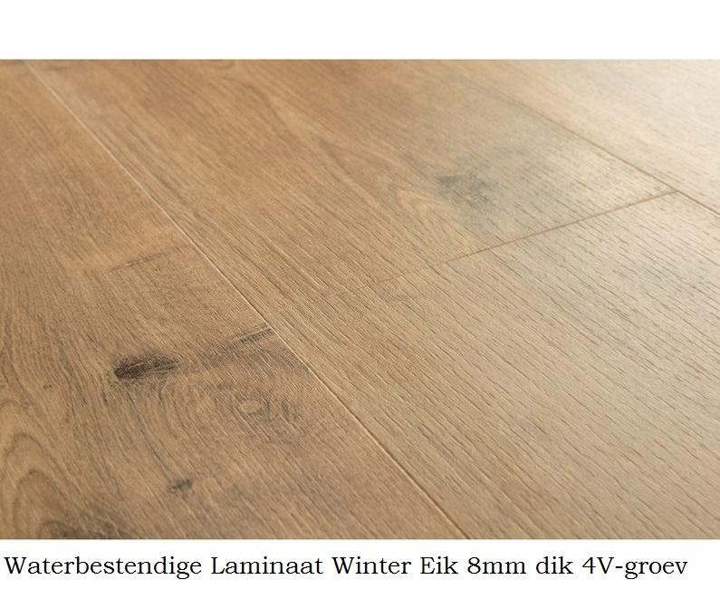 waterbestendig laminaat Winter Eik 8690 1